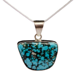Turquoise with Black Matrix Pendant